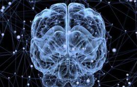 مولفه-های-اصلی-تحول-شناختی-از-دیدگاه-پیاژه